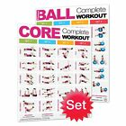 2pc Productive Fitness Fighthrough Work Out Poster Set Laminated
