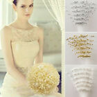 10/20pcs Pearl Beaded Bridal Bouquet Wedding Party Home Diy Decor Accessories