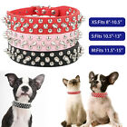 Dog Spiked Studded Rivets Dog Pet Faux Adjustable PU Leather Collar Toy XS S M