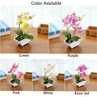 Artificial Butterfly Orchid Fake Flowers Bouquet Home Room Decor W/ Flowerpot