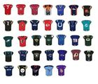 NFL Jersey Pin Choice 35 Pins Choose Team Pin Wincraft New on Card Kaepernick $7.25 USD on eBay