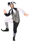 Mens Medieval Harlequin Jester Circus Performer Carnival Fancy Dress Costume