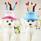 Cat dog pet happy birthday candles hat cosplay costume dress party headwearcY US