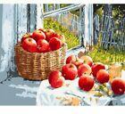 Paint By Numbers Adults kids Apple Fruits Basket DIY Painting Kit 40x50CM Canvas