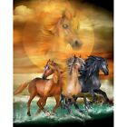 Paint By Numbers Adults Kids Running Horses DIY Painting Kit 40x50CM Canvas