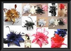 NEW LARGE 16CM FLOWER & FEATHER PEARL BEAD WRIST CORSAGE HAIR FASCINATOR BROOCH