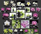 GLASBILD WANDBILD DECO GLASS FLOAT GLAS ORCHIDEE FENG SHUI ZEN STEIN WELLNESS