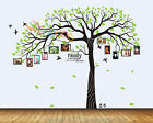 """Wall Decal Sticker Removable Photo Frame Tree Family Branches Quote 80""""H DC0108"""