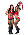 TARA 03 AND MISS TESSMACHER (WRESTLING)  PHOTO PRINT