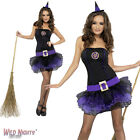 Halloween Fancy Dress # Ladies Fever Purple Tutu Witch Costume Size 4-14