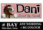 BAY white Blaze socks HORSE PONY cartoon name Sign Plaque Stable door tack room*