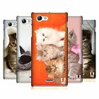 HEAD CASE DESIGNS CATS CASE COVER FOR SONY XPERIA J ST26i