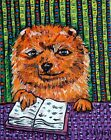 Pomeranian dog art  from painting GIFT modern  folk library  GLOSSY PRINT