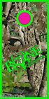 Camo Bone Collector Cornhole BagToss Game Sticker Decal Set Wrap Wraps 2