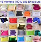 "1 pc 16mm 100% Mulberry Silk Baby Pillow Cases Cover Side Zipper Closure 14""X20"""