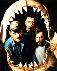 ROY SNEIDER 01 (JAWS) CAST PHOTO PRINT