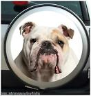 ENGLISH BULLDOG SPARE WHEEL COVER STICKER 4X4 (CHOICE OF SIZES)