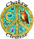 CHAKRA CLEANSE ORGANIC Essential Oil BLEND for center balance Buy 3 Get 1 FREE