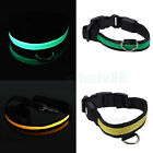 High-visibility Pet Dog Safety Flashing Green/Yellow LED Light Belt Collar S M