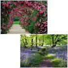 OUTDOOR LARGE SCENERY GARDEN WATERPROOF CANVAS FRAME WALL PHOTO PICTURE 78x59cm