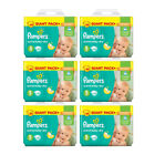 Pamper Active Baby Dry Junior Gr. 5 11-18 kg Sparpack 39-468 Windeln Monatsbox
