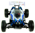 Trojan 1:16 RC Buggy Car 2.4G - PRO Brushless Version