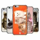 HEAD CASE DESIGNS CATS HARD BACK CASE FOR APPLE iPHONE PHONES