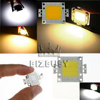 Bulk of 10W 20W 30W High Power Great Bright LED Light Lamp Chip Cool/Warm White