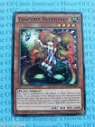 Traptrix Nepenthes MP14-EN087 Common Yu-Gi-Oh Card Mint 1st Edition English New