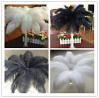 Wholesale 10-200pcs High Quality 6-26inch/15-65cm Natural Ostrich Feather Select