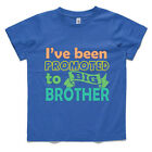 Promoted to Big Brother, Custom printed Boys T-shirt, new baby announcement