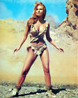 Raquel Welch Movie Photo [S277218] Size Choice
