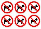 Pack Of 6 No Dogs Stickers 2 Sizes 50x50mm & 100x100mm - Prohibition Signs