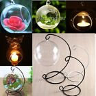 Hanging Round Bubble Glass Terrarium Air Plant Tea Light Bar Candle Iron Holder