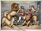 Circus Entertainment Advertising Poster Print Lion Tamer in Cage Lioness Lions