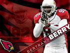 Bertrand Berry Arizona Cardinals NFL Wall Print POSTER UK