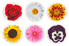 "Flower Fridge Magnets - 32mm (1.25"") - Rose, Sunflower, Daisy, - Gift & Kitchen"