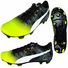 Mens Puma evoPOWER 3.3 Graphic FG Football Boots Soccer Firm Ground Boot 103773