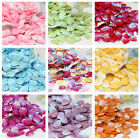 100Pcs Shell Shape Sequins Paillettes DIY Craft Sewing Clothing Decor 13mm