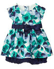 NWT Gymboree Fun & Fancy Floral Watercolor Dressy Bloomer Set 2PC Baby Girl