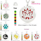 1pc 30mm Stainless Steel Aroma Dffuser Locket Pendant Essential Oil+10Pads178