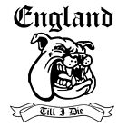 ENGLAND TILL I DIE T SHIRT, ENGLAND SUPPORTERS  COTTON T SHIRT  TO 5 XL