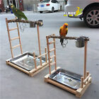 Parrot Cage Bird Stand Wood Parrot Stand Bird Train Stand Toy Play Gym Center