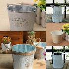 Rustic Flowers & Garden Bucket Design Small Metal Succulent Plant Container