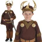 Boys Historical Viking  costume with Helmet