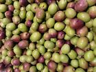 Manzanilla Olives Organic Raw California Valley for Curing