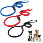Nylon Rope Training Leash Slip Lead Strap Adjustable Traction Collar for Pet Dog
