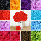 "36 Extra LARGE 5"" Silk CARNATIONS Wedding Flowers Centerpieces Arrangements SALE"