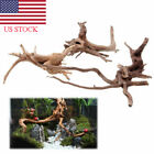 Natural Tree Trunk Driftwood Aquarium Fish Tank Reptile Plant Wood Decor S/M US