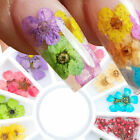 3D Nail Real Dry Dried Flower Leaves UV Gel Tips Nail Art Decoration Wheel DIY